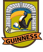 Guinness Hurling